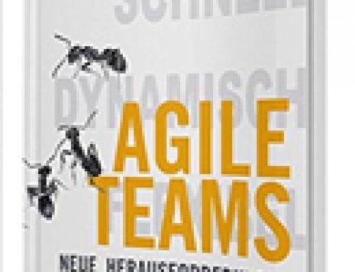 Agile Teams: Neue Herausforderungen fokussiert meistern
